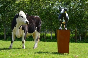 Skellerns Artwork - Cow Sculpture