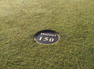 Golf Course Tee Marker